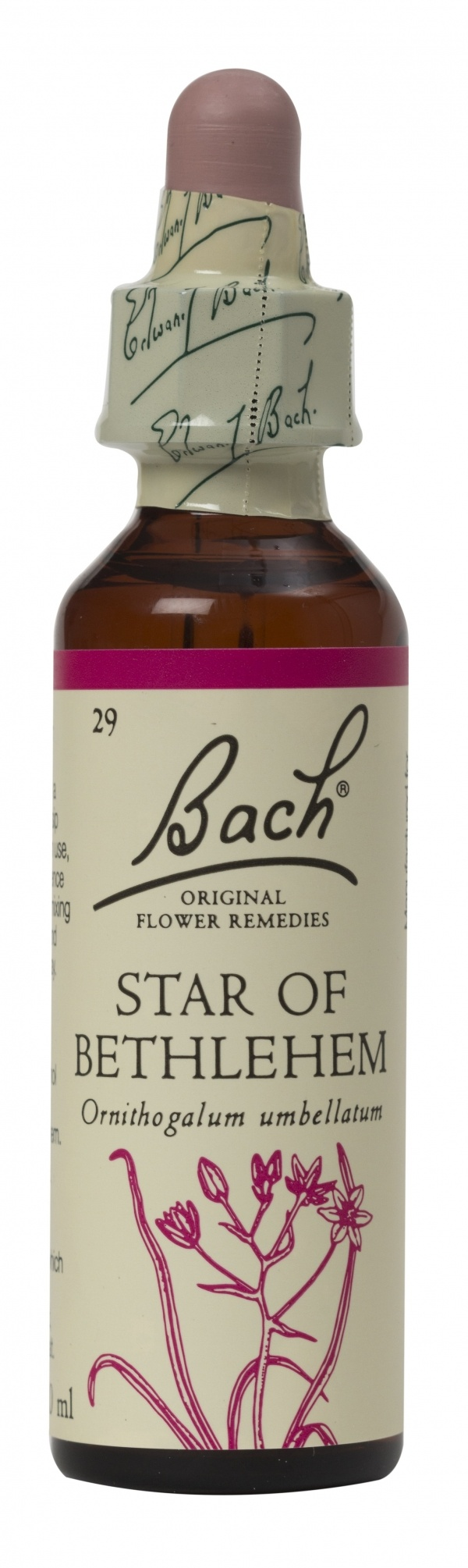 Bach Flower Remedy Star of Bethlehem 20ml