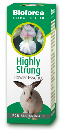 A. Vogel Highly Strung Essence for Pets 30ml