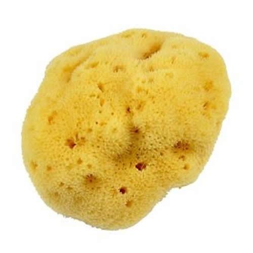 Forsters Natural Sea Sponge, Silk Medium